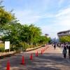 「第3回高橋尚子杯ぎふ清流ハーフマラソン」で走ってきました。