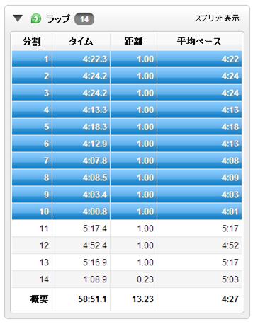 GARMIN_20131010_01