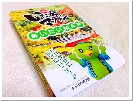 ibigawa-marathon-20131029_02_edited