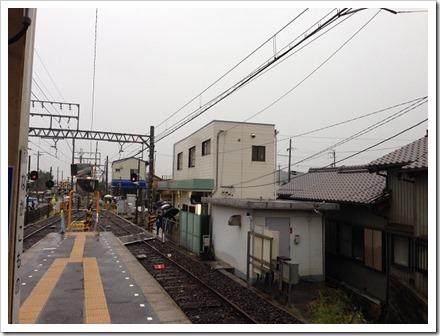 kamoshika_20131020_01