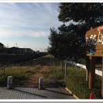 11/25の練習 朝イチjog 20.43km ; 「ジュビロ磐田メモリアルマラソン」の翌日。