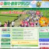 「第9回掛川・新茶マラソン」 フルマラソンの部でエントリーしました!大会名の「新茶」に心ひかれて…。