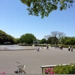 「マラソントレーニング in 庄内緑地公園 vol.6」でハーフを走ってきました。