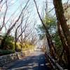 COOLPIX S01で撮影しました。西尾市八ツ面山(愛知県)からの景気。