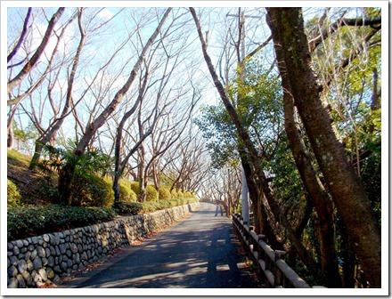 yatsuomoteyama_20131220_ 004