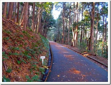 yatsuomoteyama_20131220_ 012