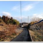 1/15の練習 120分朝jog(朝イチじゃないよ)