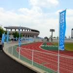 【第50回越前大野名水マラソン】2月1日午前9時よりエントリー開始!「黒川名水マラソン」とどっちを選ぶ!
