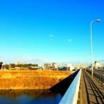 1/19の練習 「マラソントレーニング in 庄内緑地公園 vol.8」1時間16分29秒!