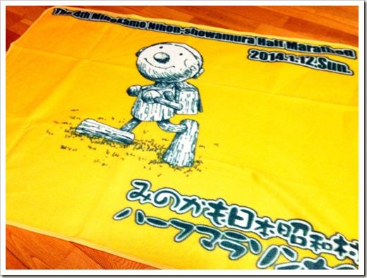 minokamo_20140113_02