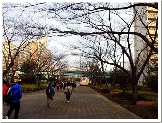 tokyo30k_fuyu_20140125_3757