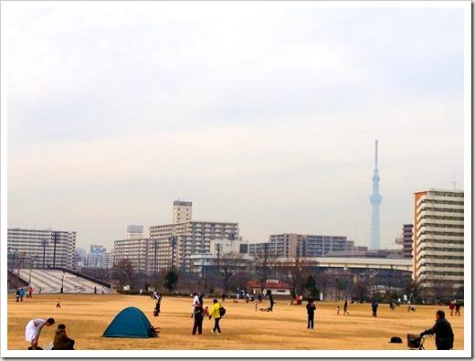 tokyo30k_fuyu_20140125_3825