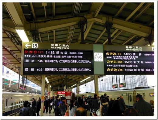 tokyo30k_fuyu_20140125_3844