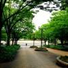 【2014ランニングフェスタ in 庄内緑地公園】今のところのペースプラン。2時間で32キロ!