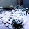 今日の朝ランは…雪降ってます。積もってます。