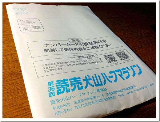 inuyama_half_20140204_3971