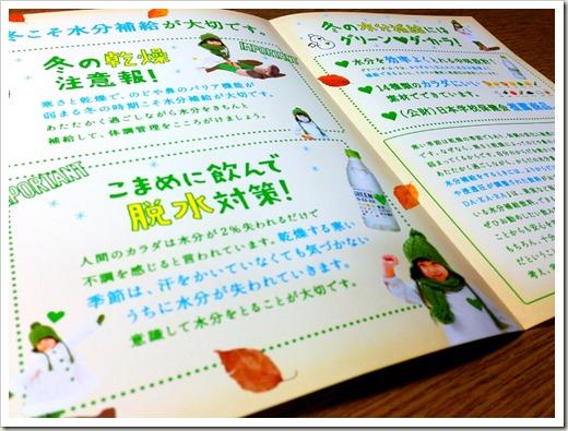 inuyama_half_20140204_3982