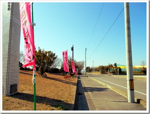 isshiki_marathon_20140121 014