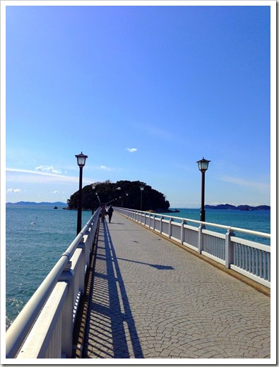 mikawawan_20140209_022726767_iOS