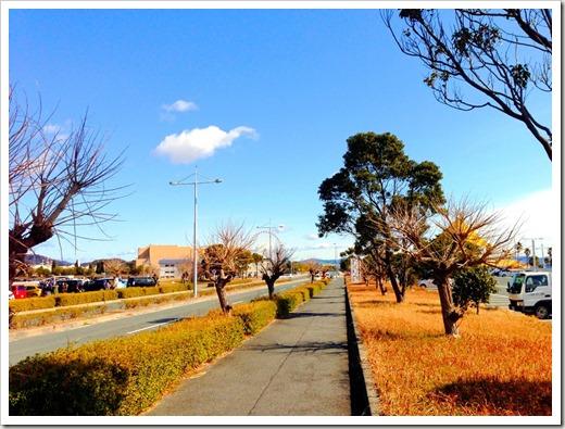 mikawawan_20140209_030605510_iOS