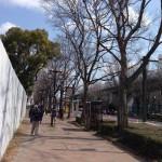 【今日の練習】3/10 120分朝イチjog + 60分夜jog ; 「名古屋ウィメンズ2014」完走率は97.6%らしい。
