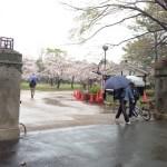 【第5回穂の国・豊橋ハーフマラソン】当日 会場到着!