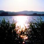 【今日の練習】4/17 150分朝イチjog ; 汗の結晶で真っ白に。