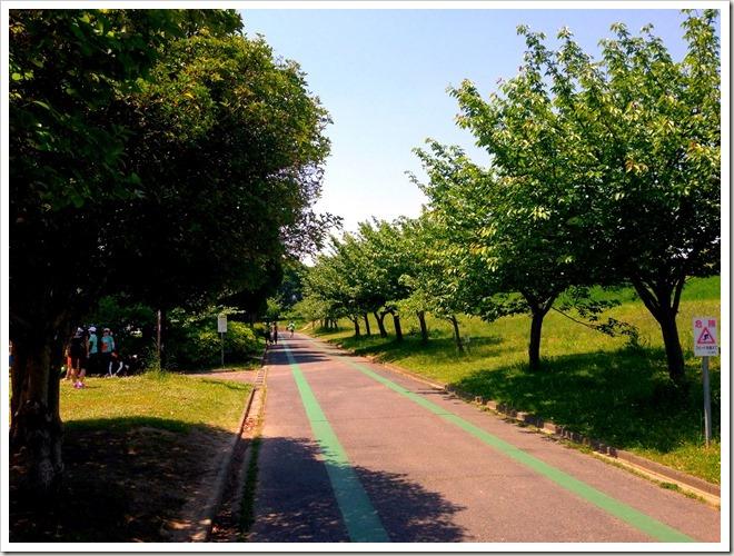 庄内緑地公園・ランニングコース
