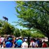 【第4回高橋尚子杯ぎふ清流ハーフマラソン】300枚以上から厳選。写真で振り返る!大会前日編。