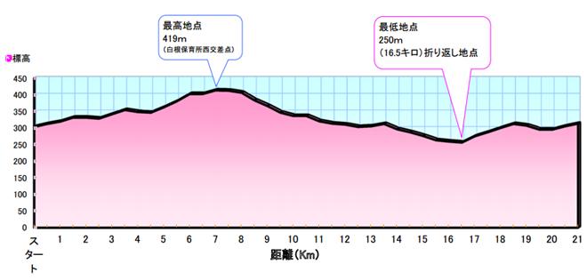 第12回南アルプス桃源郷マラソン大会 コースマップ