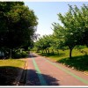 【マラソントレーニング in 庄内緑地公園 vol.17】2014年9月7日(日)開催!エントリーしました。