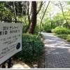 【安城産業文化公園 デンパーク】「第5回ホタルまつり」開催!ホタル少なめ。今週末はもう少し増える!?