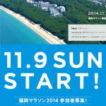 【確定!】【福岡マラソン2014】抽選結果は6月20日(金)発表!通常枠エントリー。