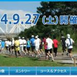 【2014大阪30K】エントリー開始!6月20日(金)午前0:00より。でも見送り。