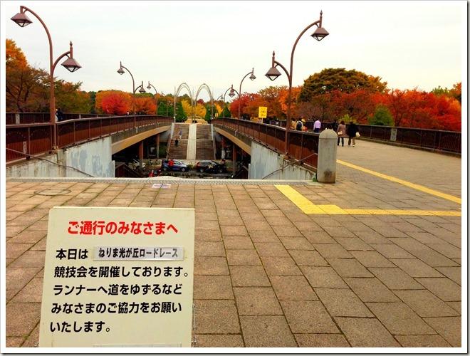 nerima-hikari_20121111_01_edited