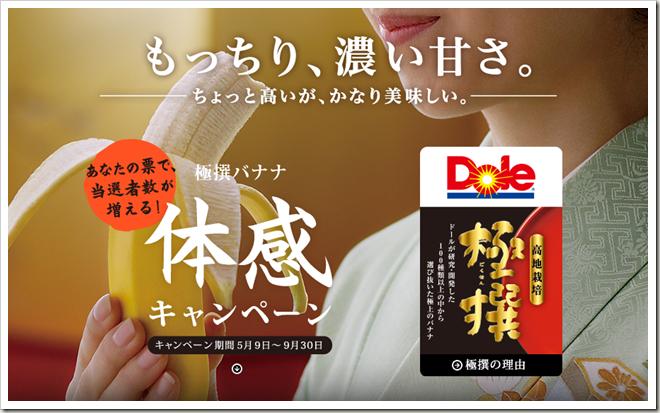 tokyo_marathon_20140724_01