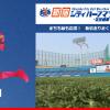【第13回新宿シティハーフマラソン】今回から「明治神宮野球場」がメイン会場。8月29日(金)より先行エントリー開始。