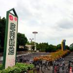 【マラソントレーニング in 庄内緑地公園 vol.18】翌日に「第18回大阪・淀川市民マラソン」あるけど、エントリーどうしよう…