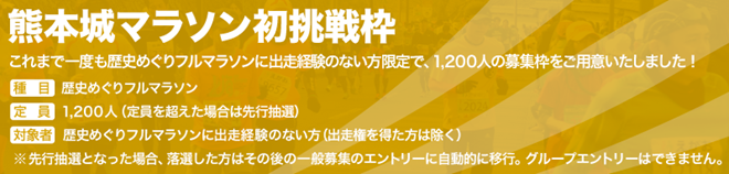 kumamotojo_marathon_20140801_02