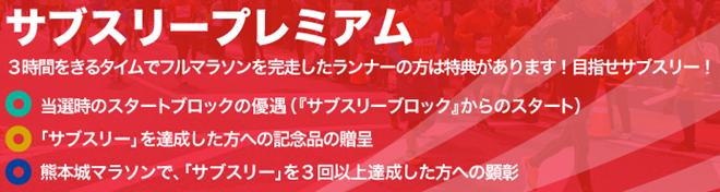 kumamotojo_marathon_20140801_03