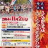 【第37回兵庫・丹波もみじの里ハーフマラソン】大会の中止が決定しました。