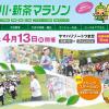 【第10回掛川・新茶マラソン】2015年4月19日(日)開催!エントリー受付は11月14日(金)より開始!