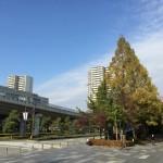 【今日の練習】11/27(朝)111分朝イチjog 21.01km!「神戸マラソン」から4日経過。ぼちぼち走れます。