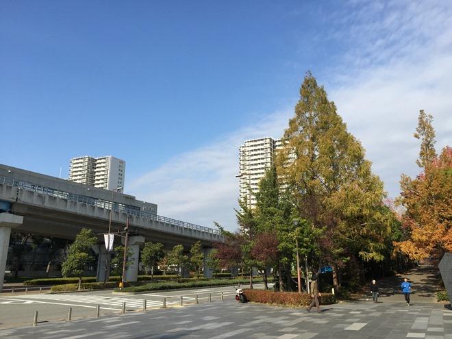 20141124_010833202_iOS