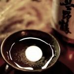 【彼女の練習】11/7 38分夜ジョグ 5.01km!