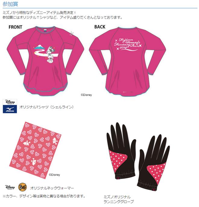 fujisan_20141130_03