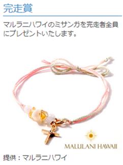 fujisan_20141130_04
