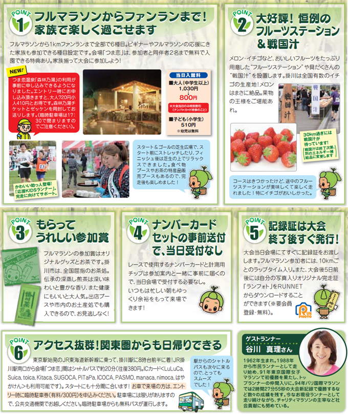 kakegawa_shincha_20141112_04