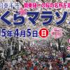 【第24回幸手市さくらマラソン】川内優輝選手が出場。 関東随一の桜の名所「権現堂桜堤」でお花見ラン