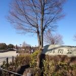 【第8回いたばしリバーサイドハーフマラソン】コースマップ・会場アクセスを確認!「浮間舟渡駅」から徒歩2.5km。